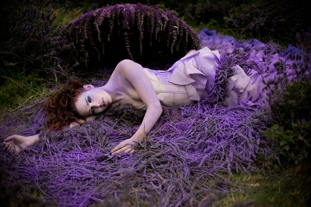 Wonderland By Kirsty Mitchell Part 1