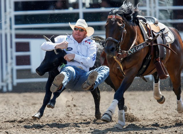 Curtis Cassidy of Donalda, Alberta, wrestles a steer in the steer wrestling event during the rodeo as the Calgary Stampede gets underway following a year off due to coronavirus disease (COVID-19) restrictions, in Calgary, Alberta, Canada on July 10, 2021. (Photo by Todd Korol/Reuters)