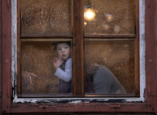 One year-old Heidi peers from a rain drop-covered window in the Transylvanian town of Sibiu, Romania, Tuesday, May 7, 2019. Sibiu will host the informal European Union Heads of State summit which will bring together EU heads of state or government, on May 9. (Photo by Vadim Ghirda/AP Photo)