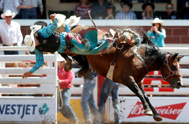 Kilby Kittson of Browning, Montana gets tossed off the horse Betrayed Cankaid in the junior saddle bronc event during the Calgary Stampede rodeo in Calgary, Alberta, Canada on July 7, 2019. (Photo by Todd Korol/Reuters)