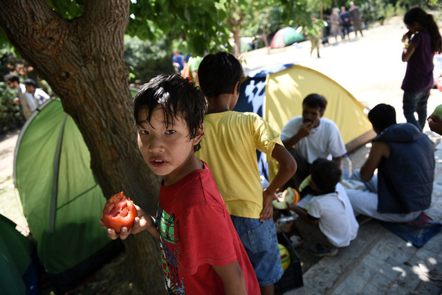 Afghan refugees eat fruit and vegetables distributed by a Greek charity in the Pedion tou Areos park in central Athens, on Friday, July 24, 2015. Scores of migrants, mostly from Afghanistan, live in an unofficial camp in the rundown park, as Greek authorities have failed to formulate a coherent policy on how to handle a massive wave of illegal immigration. (Photo by Giannis Papanikos/AP Photo)