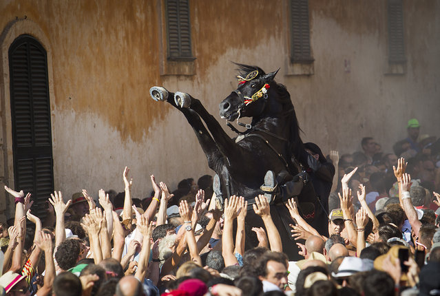 """A horse rears in the crowd during the traditional San Juan (Saint John) festival in the town of Ciutadella, on the Balearic Island of Menorca, on the eve of Saint John's day on June 23, 2017. During the island's San Juan festival, held each year on June 23 and 24, Minorcan race horses gallop and prance on their hind legs through the streets of Ciutadella to honor of the town's patron saint. As the """"caixers"""" (horse riders) ride together in a parade, spectators attempt to pat the horses' chests to get good luck. (Photo by Jaime Reina/AFP Photo)"""