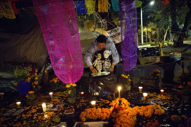 A young man arranges skeletons on a Day of the Dead altar at a tent encampment at Multifamiliar Tlalpan, where nine people died when a building collapsed in the Sept. earthquake, in Mexico City, Tuesday, October 31, 2017. People in Mexico are marking this year's holiday by remembering the people killed in the Sept. 19 earthquake. (Photo by Rebecca Blackwell/AP Photo)