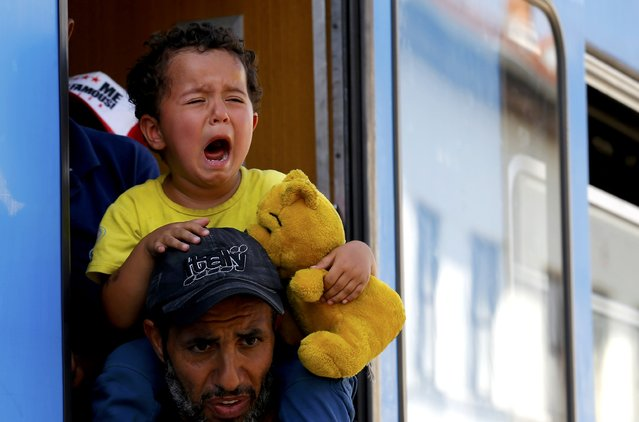 A migrant child cries as migrants scramble aboard a train at the station in Beli Manastir, Croatia September 18, 2015. (Photo by Laszlo Balogh/Reuters)