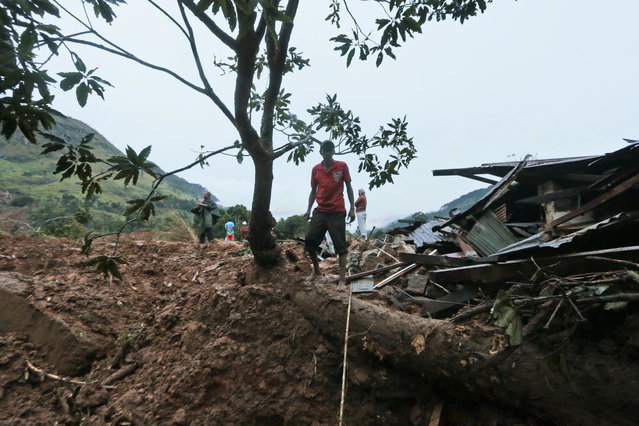 A Sri Lankan man stands on an uprooted tree at the site of a mudslide at the Koslanda tea plantation in Badulla district, about 220 kilometers (140 miles) east of Colombo, Wednesday, October 29, 2014. (Photo by Eranga Jayawardena/AP Photo)