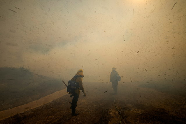 Firefighters face strong winds as they head up a hillside to battle a wind driven wildfire near Irvine, California, U.S., October 26, 2020. (Photo by Mike Blake/Reuters)
