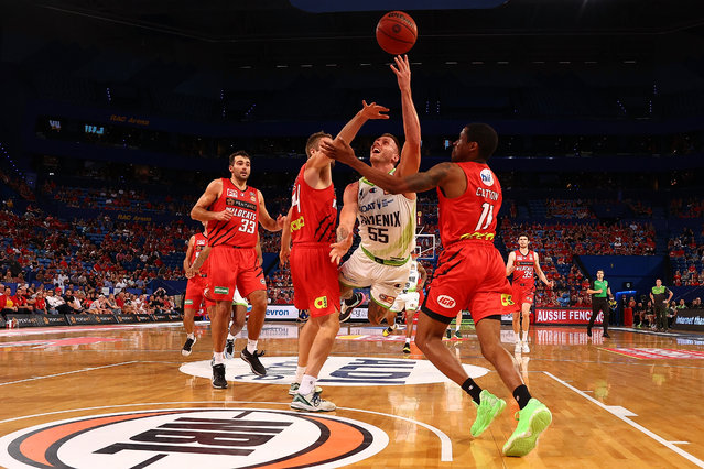 Mitchell Creek of the Phoenix gets fouled by Jesse Wagstaff of the Wildcats during the round three NBL match between the Perth Wildcats and the South East Melbourne Phoenix at RAC Arena, on January 29, 2021, in Perth, Australia. (Photo by Paul Kane/Getty Images)