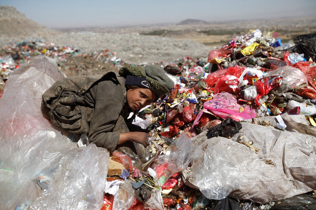 A boy collects recyclable items at a rubbish dump site on the outskirts of Sanaa, Yemen November 16, 2016. (Photo by Mohamed al-Sayaghi/Reuters)
