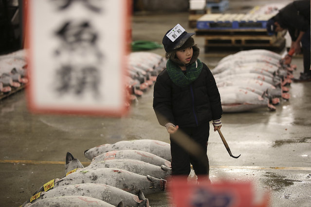 A child pretends to be a prospective buyer inspecting the quality of frozen tuna before the first auction of the year at Tsukiji fish market  in Tokyo, Tuesday, January 5, 2016. (Photo by Eugene Hoshiko/AP Photo)