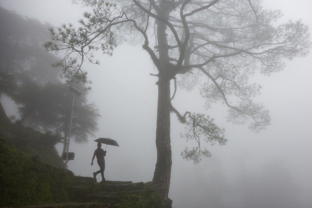 A man walks with an umbrella in thick fog in Dharmsala, India, Tuesday, July 24, 2018. The mountain region is currently receiving monsoon rains. (Photo by Ashwini Bhatia/AP Photo)