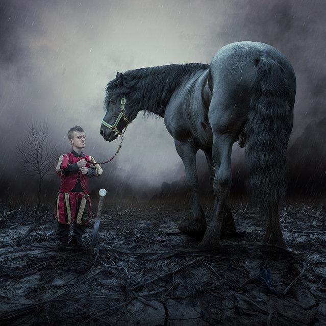 """The dark knight"". (Photo by Ionut Caras)"