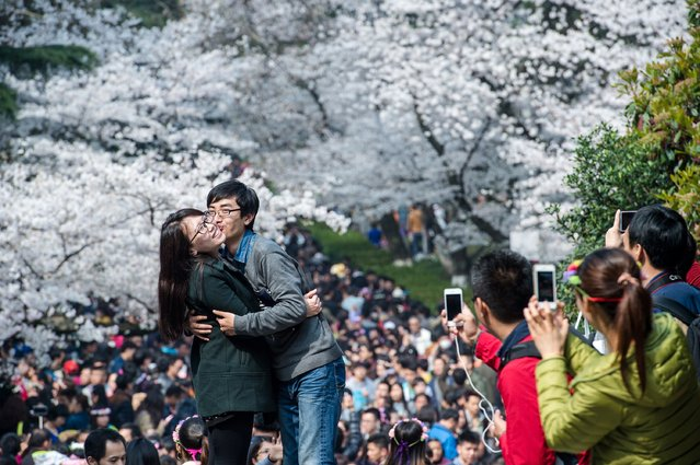 This picture taken on March 21, 2015 shows a couple posing in front of blooming cherry blossoms in Wuhan in central China's Hubei province. (Photo by AFP Photo/Stringer)