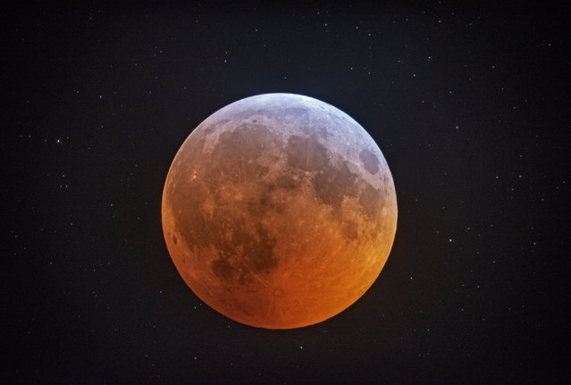 In this photo made with a 12-1/2 inch telescope and provided by Johnny Horne, the totally eclipsed moon glows with a reddish color against the background stars over Stedman, N.C., Monday, January 21, 2019. It was also the year's first supermoon, when a full moon appears a little bigger and brighter thanks to its slightly closer position. During totality, the moon will look red because of sunlight scattering off Earth's atmosphere. That's why an eclipsed moon is sometimes known as a blood moon. In January, the full moon is also sometimes known as the wolf moon or great spirit moon. (Photo by Johnny Horne via AP Photo)