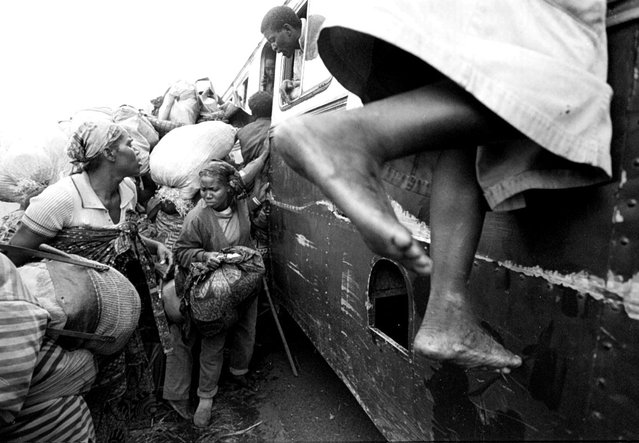 Rwandan refugees try to board a bus in Sake to transport them to the border; 1996. (Photo by Carol Guzy/The Washington Post)