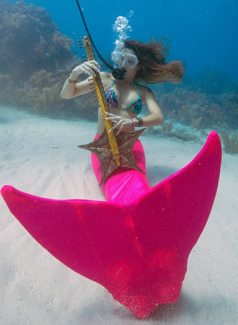Sarah Brunner, costumed as a mermaid, pretends to play a starfish guitar during the Underwater Music Festival in the Florida Keys National Marine Sanctuary off Big Pine Key, Florida in this July 11, 2015 handout photo. (Photo by Rob Care/Reuters/Florida Keys News Bureau)