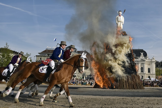 Members of a guild ride around the Boeoegg, a giant symbolic snowman made of wadding and and filled with firecrackers burning on top of a bonfire in Sechselaeuten square on April 24, 2017 in Zurich. When the bells of the Saint Peter's church chime six o'clock, the bonfire under the snowman is set in fire and the guildsmen wearing historical costumes ride around the bonfire. The faster the head of the snowman explods the warmer and more beautiful the summer will be. (Photo by Michael Buholzer/AFP Photo)