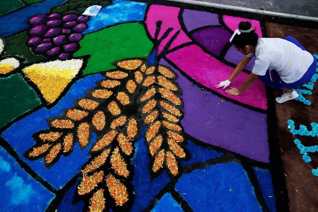 A woman prepares a sawdust and flower carpet during the feast of Corpus Christi in downtown Trujillo, Peru, May 26, 2016. (Photo by Mariana Bazo/Reuters)