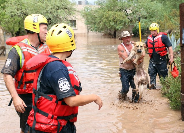 Kenneth Kerber (2-R) is rescued along with his dog Gus, by members of the Daisy Mountain Fire Department, in New River, Arizona, USA, 19 August 2014. A monsoon storm dropped some 20 cm of rain on the desert community north of Phoenix by mid-day, causing flash floods throughout the area. (Photo by Roy Dabner/EPA)