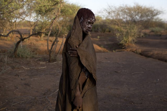 A Pokot girl, covered in animal skins, walks to a place where she will rest after being circumcised in a tribal ritual in a village about 80 kilometres from the town of Marigat in Baringo County, October 16, 2014. (Photo by Siegfried Modola/Reuters)