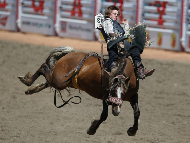 Spur Lacasse of Cochrane, Alberta rides the horse Rebel Warrior in the novice bareback event during the Calgary Stampede rodeo in Calgary, Alberta, in this July 12, 2014 file photo. (Photo by Todd Korol/Reuters)