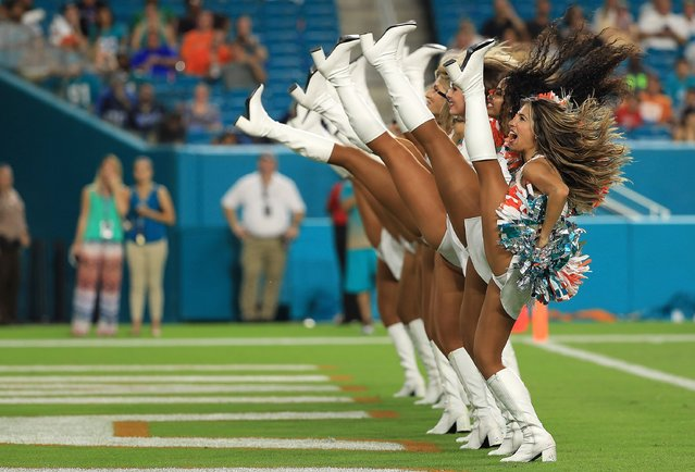 The Miami Dolphins cheerleaders perform during a preseason game against the Tennessee Titans at Hard Rock Stadium on September 1, 2016 in Miami Gardens, Florida. (Photo by Mike Ehrmann/Getty Images)