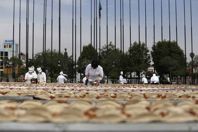 Chefs prepare tacos of Cochinita Pibil, a popular dish from Yucatan, in an attempt to break the Guinness World Record for the world's longest taco in GuadalajaraFebruary 15, 2015. (Photo by Alejandro Acosta/Reuters)