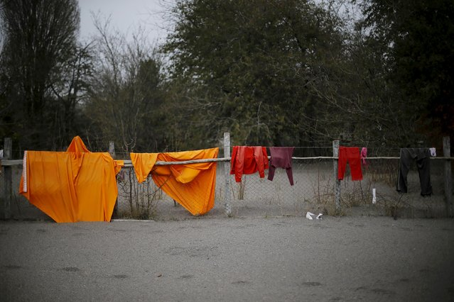 Clothes are seen on a fence in the backyard of a house at Ensenada town which is covered with ashes from Calbuco volcano near Puerto Varas city, April 23, 2015. (Photo by Ivan Alvarado/Reuters)