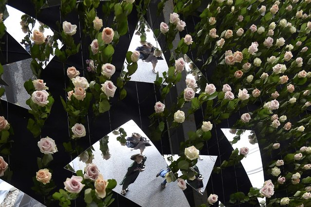 Visitors are reflected in mirrors on a ceiling with roses hanging from it at the Chelsea Flower Show in London, Britain, May 23, 2016. (Photo by Toby Melville/Reuters)