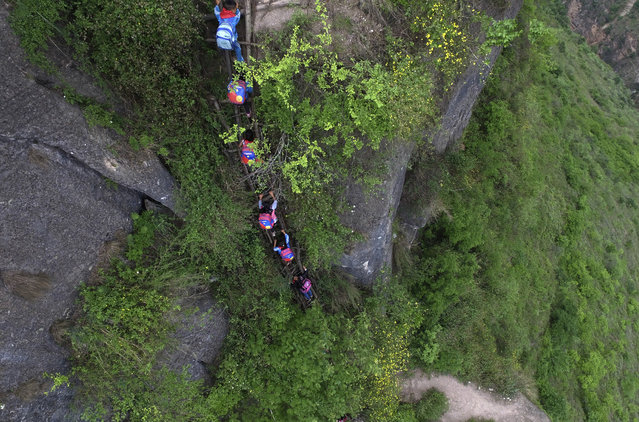 In this  May 14, 2016 photo, children carry their school backpacks as they climb a cliff on their way home from school in Zhaojue county, southwest China's Sichuan province. (Photo by Chinatopix via AP Photo)