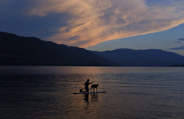 A paddleboarder and dog travel along Shuswap Lake as the sun sets in Sicamous, British Columbia. (Photo by Jason Franson/The Canadian Press via AP Photo)