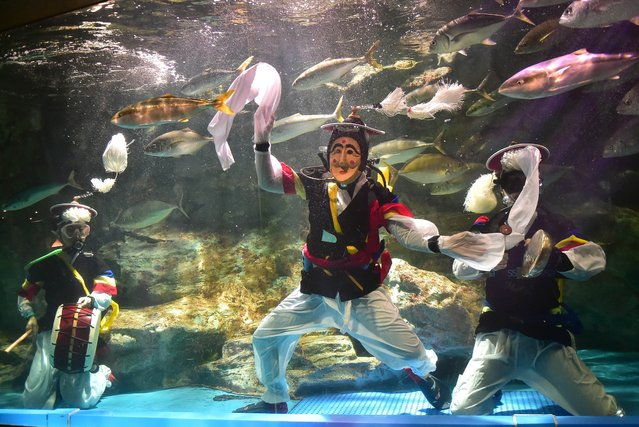 South Korean divers perform a traditional masked dance and music to promote an event to celebrate the upcoming Chuseok holiday at an aquarium in Seoul on September 1, 2014. South Koreans celebrate the three-day Korean Thanksgiving holiday with family members to mark the mid-autumn harvest from September 7 to 9. (Photo by Jung Yeon-Je/AFP Photo)