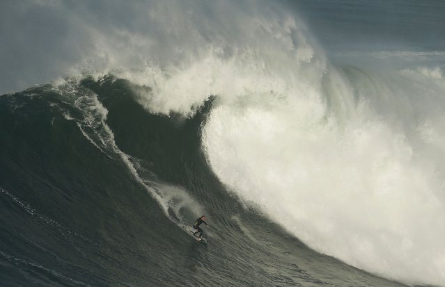 Big-wave surfer Sebastian Steudtner of Germany drops in on a large wave at Praia do Norte, in Nazare November 29, 2014. (Photo by Rafael Marchante/Reuters)