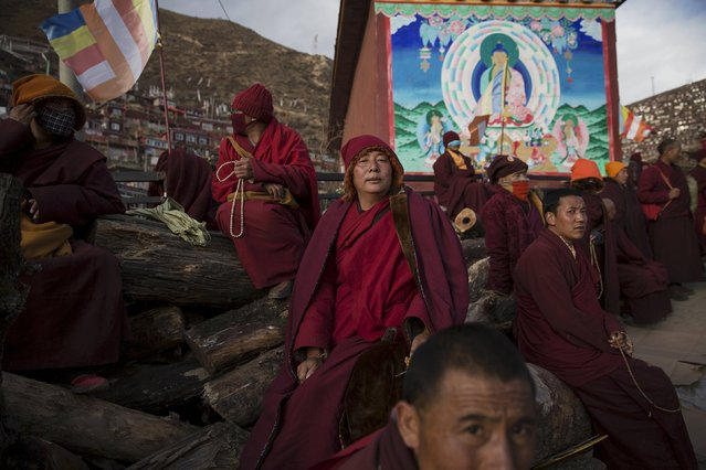 Tibetan Buddhist monks take a break at a Buddhist laymen lodge where thousands of people gather for daily chanting session during the Utmost Bliss Dharma Assembly, the last of the four Dharma assemblies at Larung Wuming Buddhist Institute in remote Sertar county, Garze Tibetan Autonomous Prefecture, Sichuan province, China October 30, 2015. (Photo by Damir Sagolj/Reuters)