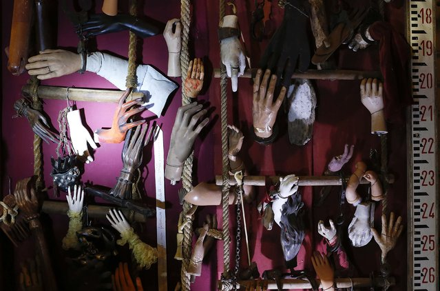 A collection of wooden, iron, and plastic hands is displayed in the Museum of Domenico Agostinelli in Dragona, near Rome October 30, 2014. (Photo by Tony Gentile/Reuters)