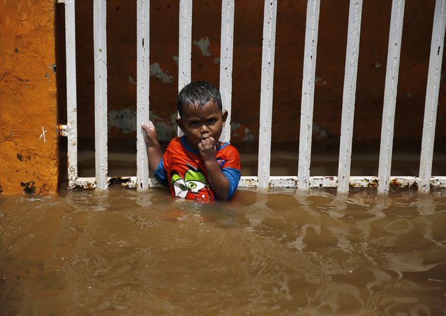A child holds on to a fence at his house during a flood at Kampung Melayu residential area in Jakarta, December 23, 2014. (Photo by Reuters/Beawiharta)