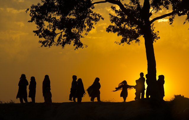 Children displaced from Pakistani tribal areas due to fighting between security forces and militants play under a tree during the last sunset of the year on the outskirts of Islamabad, Pakistan, Wednesday, December 31, 2014. (Photo by B. K. Bangash/AP Photo)