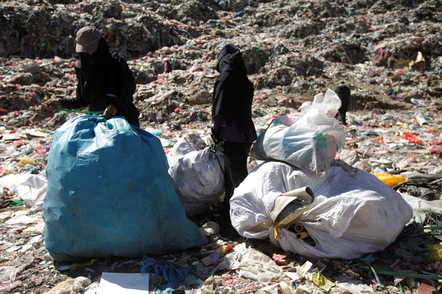 A woman with her daughter collect recyclable items at a rubbish dump site on the outskirts of Sanaa, Yemen November 16, 2016. (Photo by Mohamed al-Sayaghi/Reuters)