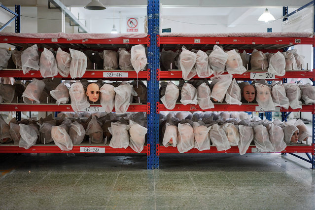 Various doll heads covered with dust bags are seen on shelves at the WMDOLL factory in Zhongshan, Guangdong Province, China, July 11, 2018. (Photo by Aly Song/Reuters)