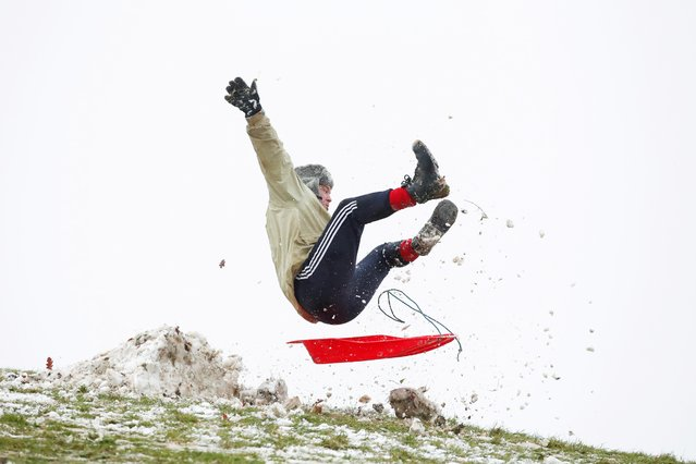 A man falls off a sledge in Campbell Park, in Milton Keynes, Britain on January 24, 2021. (Photo by Andrew Boyers/Reuters)