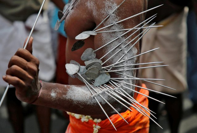 A Hindu devotee with his body pierced with metal skewers takes part in a procession during the Thaipusam festival on the outskirts of Kochi, January 21, 2019. (Photo by Sivaram V/Reuters)