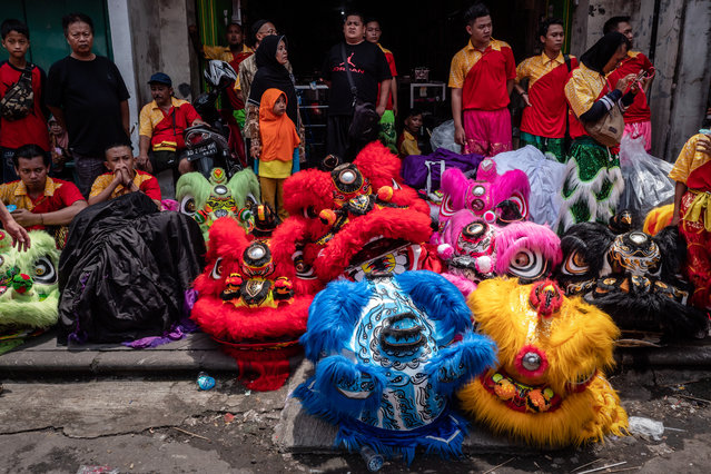 Barongsai dancers prepare before perform during Grebeg Sudiro festival on February 3, 2019 in Solo City, Central Java, Indonesia. Grebeg Sudiro festival is held as a prelude to the Chinese New Year, which falls on February 5th this year, welcoming the Year of the Pig. People bring offerings known as gunungan, including Chinese sweetcakes piled up into the shape of mountains, which are paraded in the streets followed by Chinese and Javanese performers. (Photo by Ulet Ifansasti/Getty Images)