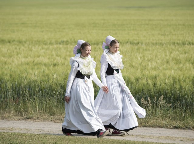 Women dressed in the traditional clothes of the Sorbs arrive for a procession in Rosenthal, eastern Germany, Monday, May 25, 2015. Traditionally on Whit Monday the  Sorbs, a Slavic minority near the German-Polish border, celebrate an open air mass in the small village east of Dresden. (Photo by Jens Meyer/AP Photo)