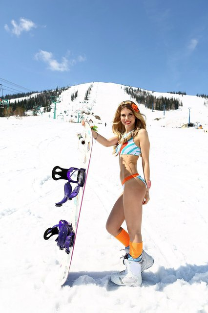 Participants in the Grelka Fest at the Sheregesh resort in Tashtagolsky District of Kemerovo Oblast, Russia on April 22, 2017. Russian girls marked the end of the ski season with a record-breaking bikini ski festival at Siberia's top winter resort, Sheregesh. Some 1,498 skiers and snowboarders undressed to impress in the annual event as they took to the pistes under blues skies and sunshine in a bracing temperature of just 5°C. (Photo by Grelka Fest/The Siberian Times)