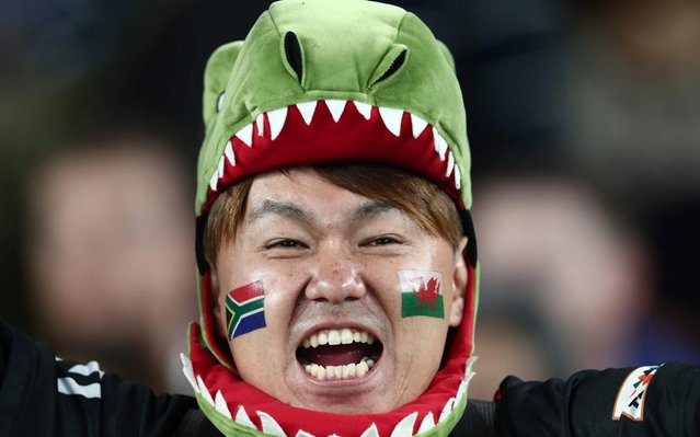 A fan awaits the start of the Japan 2019 Rugby World Cup semi-final match between Wales and South Africa at the International Stadium Yokohama in Yokohama on October 27, 2019. (Photo by Behrouz Mehri/AFP Photo)