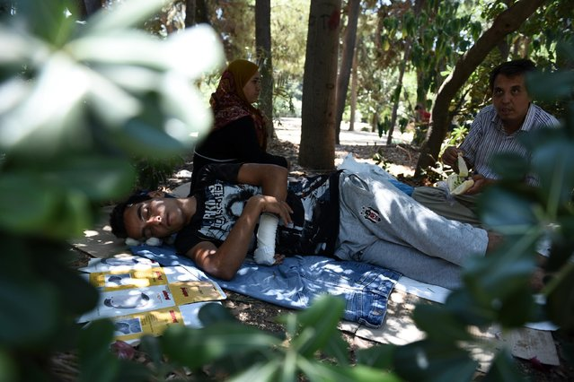 Afghan refugees rest in the Pedion tou Areos park in central Athens, on Friday, July 24, 2015. (Photo by Giannis Papanikos/AP Photo)