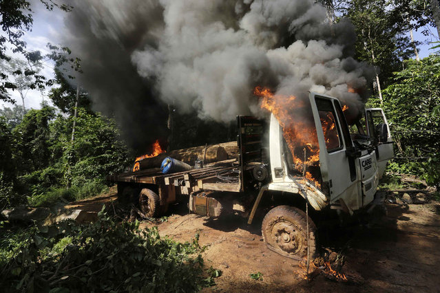 A logging truck burns after it was discovered and set on fire by Ka'apor Indian warriors during a jungle expedition to search for and expel loggers from the Alto Turiacu Indian territory, near the Centro do Guilherme municipality in the northeast of Maranhao state in the Amazon basin, August 7, 2014. (Photo by Lunae Parracho/Reuters)