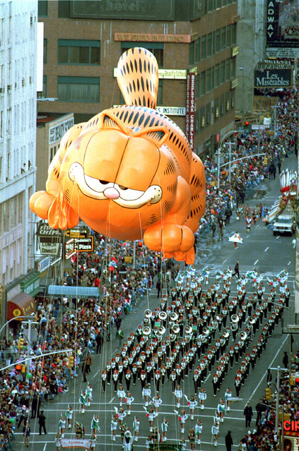 Garfield the Cat floats above a marching band on Broadway in the Macy's Thanksgiving Day parade in New York City, Thursday, November 27, 1986. (Photo by Ron Frehm/AP Photo)