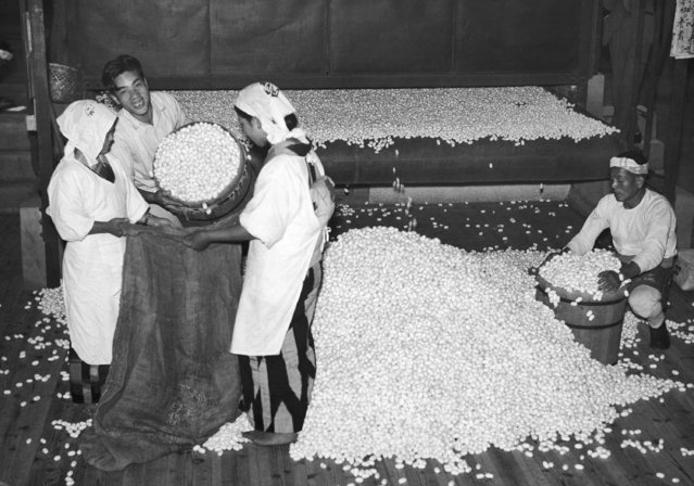 Millions of silkworm cocoons are gathered in the different prefectures and shipped in bags to Japan's many silk-mills, which turn the cocoons out in the form of elegant silk material for the American and other markets, shown June 13, 1937. (Photo by J.A. Mills/AP Photo)