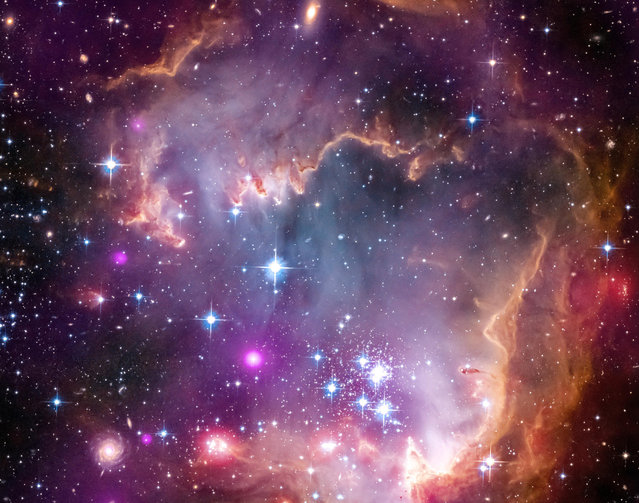 """This image obtained from NASA on April 4, 2013 shows the tip of the """"wing"""" of the Small Magellanic Cloud galaxy in this new view from NASA's Great Observatories. The Small Magellanic Cloud, or SMC, is a small galaxy about 200,000 light-years way that orbits our own Milky Way spiral galaxy.The colors represent wavelengths of light across a broad spectrum. X-rays from NASA's Chandra X-ray Observatory are shown in purple; visible-light from NASA's Hubble Space Telescope is colored red, green and blue; and infrared observations from NASA's Spitzer Space Telescope are also represented in red. The spiral galaxy seen in the lower corner is actually behind this nebula. Other distant galaxies located hundreds of millions of light-years or more away can be seen sprinkled around the edge of the image.The SMC is one of the Milky Way's closest galactic neighbors. Even though it is a small, or so-called dwarf galaxy, the SMC is so bright that it is visible to the unaided eye from the Southern Hemisphere and near the equator. Many navigators, including Ferdinand Magellan who lends his name to the SMC, used it to help find their way across the oceans. (Photo by NASA/AFP Photo)"""