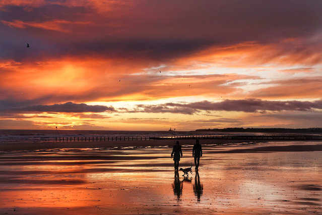 Dog walkers on Blyth Beach in Northumberland, United Kingdom on December 14, 2020. (Photo by Owen Humphreys/PA Images via Getty Images)